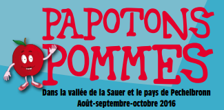 Papotons pommes